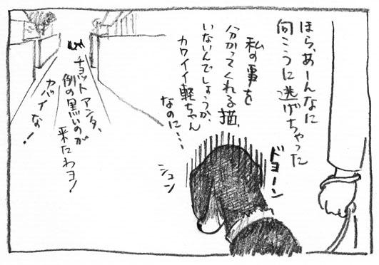 3_ドヨーン