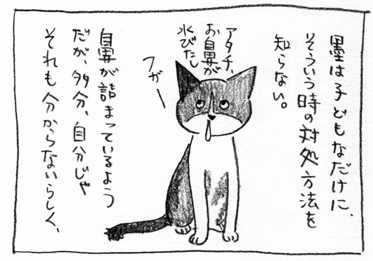 3_水びたし