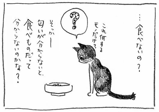 3_匂いが