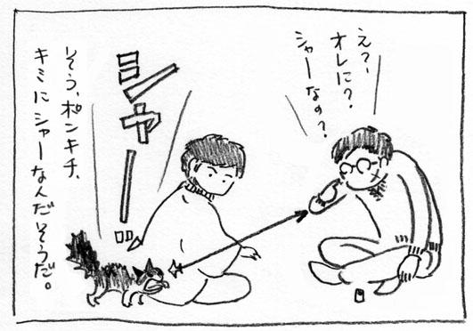 3_シャー