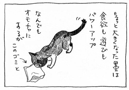 1_パワーアップ墨