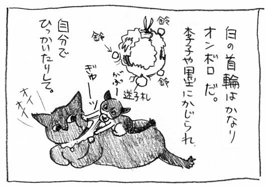 3_がぶー