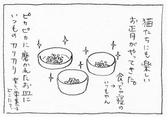 1_ピカピカ