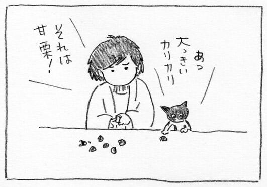 4_大きいカリカリ