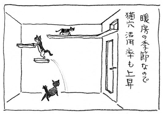 1_猫穴活用