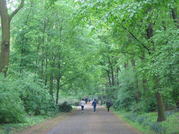 800px-Berlijn_tiergarten_park.jpg