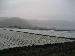 2012野辺山 (7)
