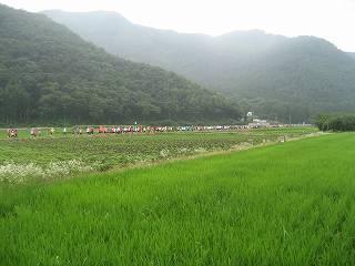 2012小布施見にマラソン (26)