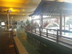 [写真]木更津・龍宮城ホテル三日月のお風呂の様子