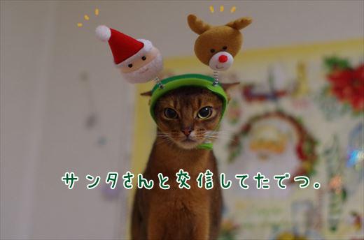 02_IMGP3129_RT.jpg