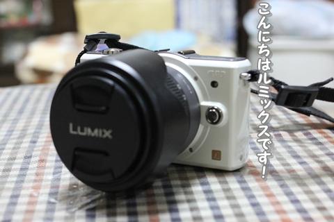 20130108-IMG_6129.jpg