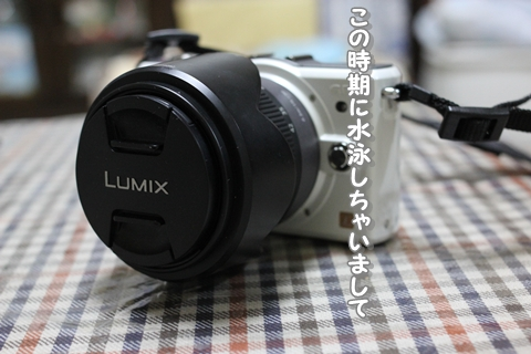20130108-IMG_6130.jpg