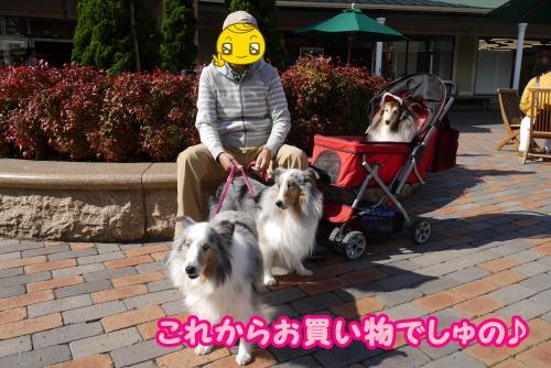 002_convert_20141028171439.jpg
