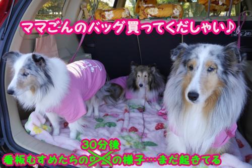 028_convert_20141126131024.jpg