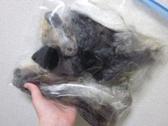 洗い上がりの原毛たち