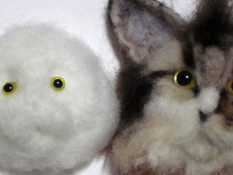 目のサイズ比較