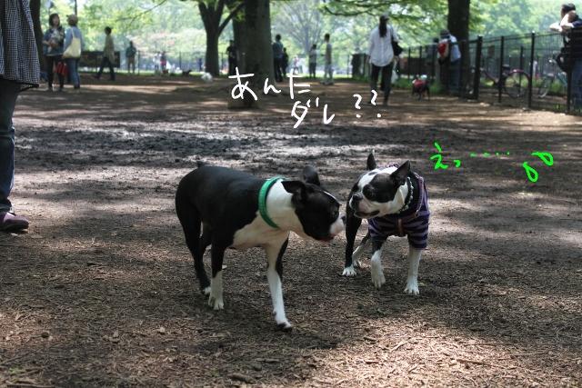 東京D 108_edited-1 (640x427)