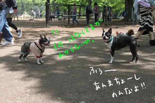 東京D 261_edited-1 (640x427)