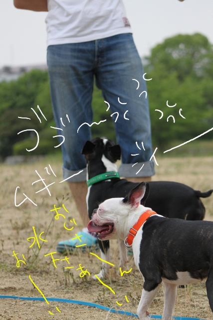 ぼりょぽんみりとめ 093_edited-1 (427x640)