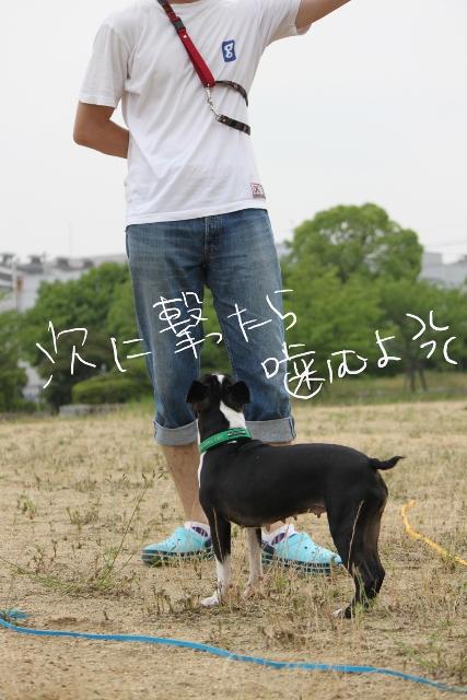 ぼりょぽんみりとめ 092_edited-1 (427x640)