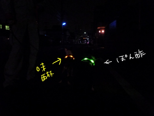 首輪 016_edited-1 (640x480)