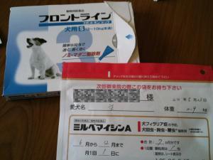 moblog_198a3746.jpg