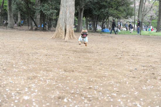 2012_04_15_01.jpg
