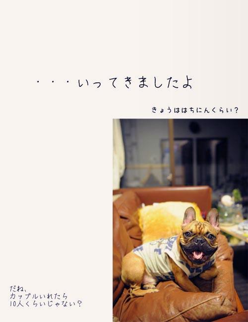 2012_08_19_02.jpg