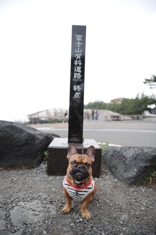 2012_09_22_02.jpg
