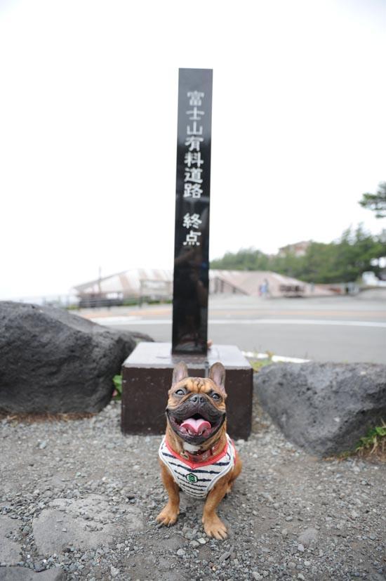 2012_09_22_03.jpg