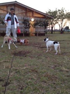 2012_10_26_11.jpg