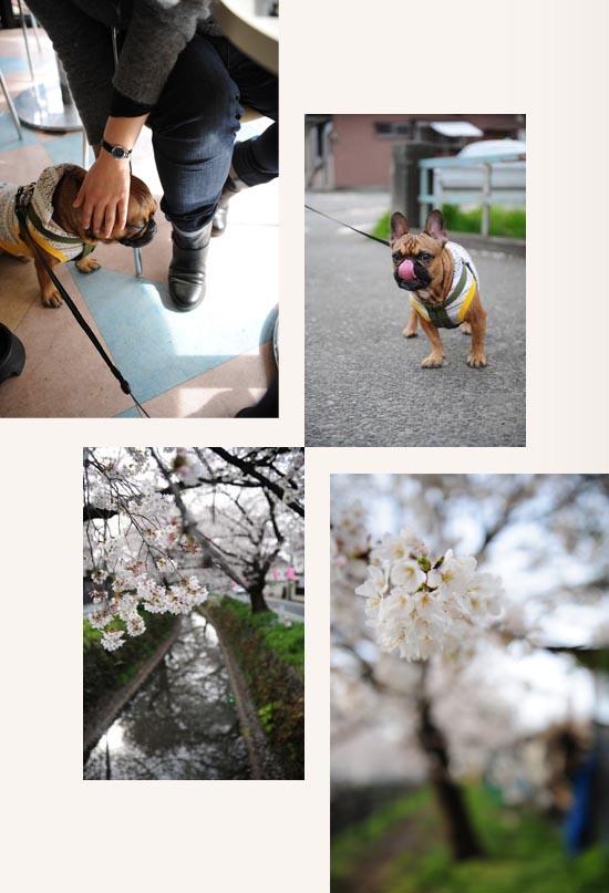 2013_03_26_03.jpg