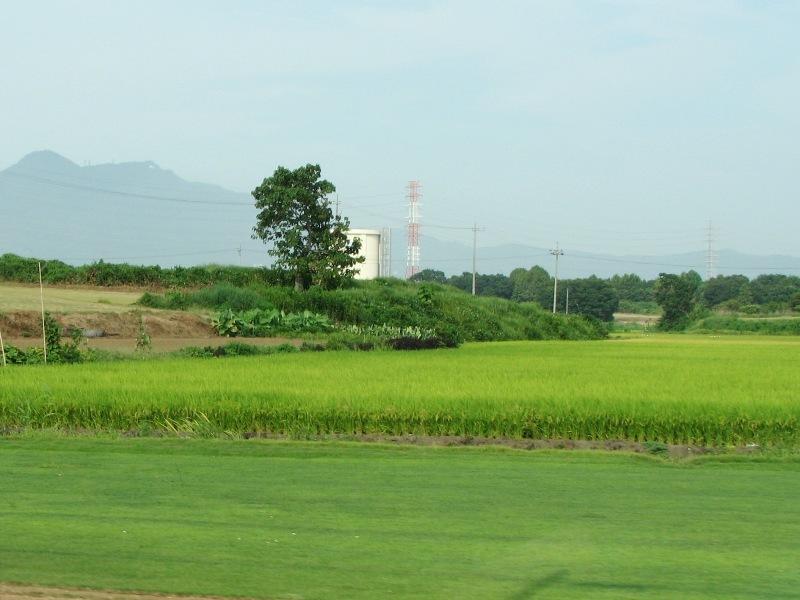 筑波山と芝生