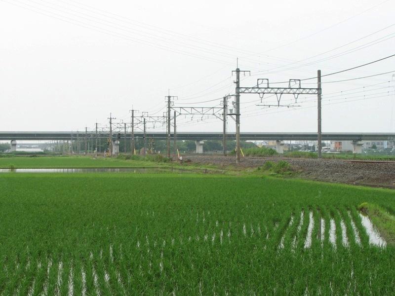 宮代町内 東武伊勢崎線