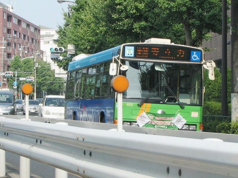 Y-K545