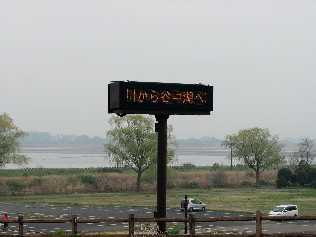 yosimidori05.jpg