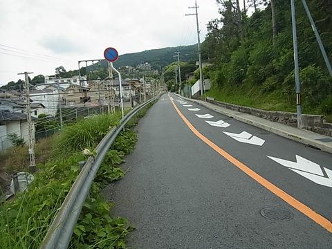 RIMG0394.jpg