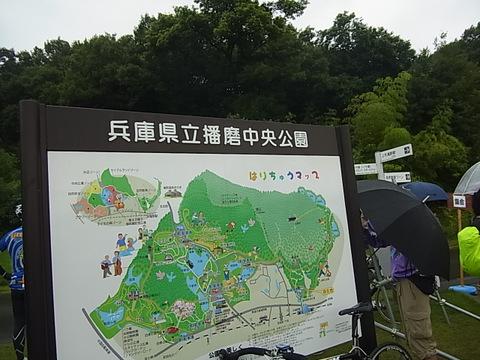 RIMG0418.jpg