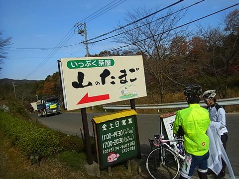 RIMG0704.jpg