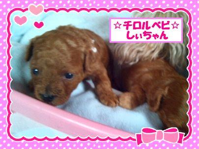 LINEcamera_share 20120724 3
