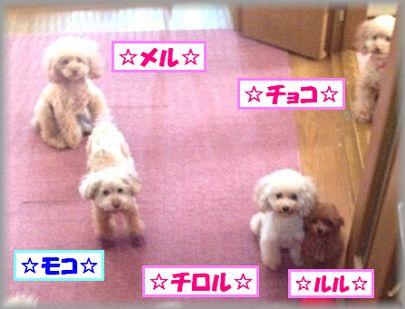 20121010  IMG_0505