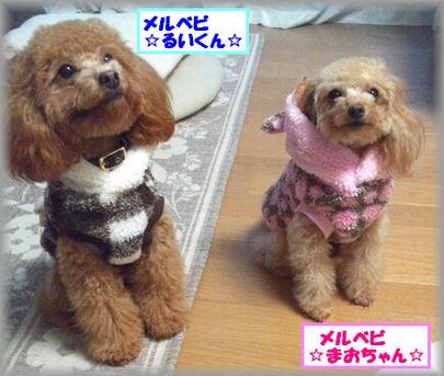2012 1023 まおるいIMG_0997