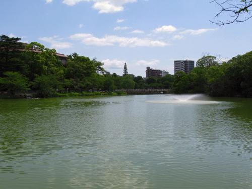 mandaiike_201307010951.jpg