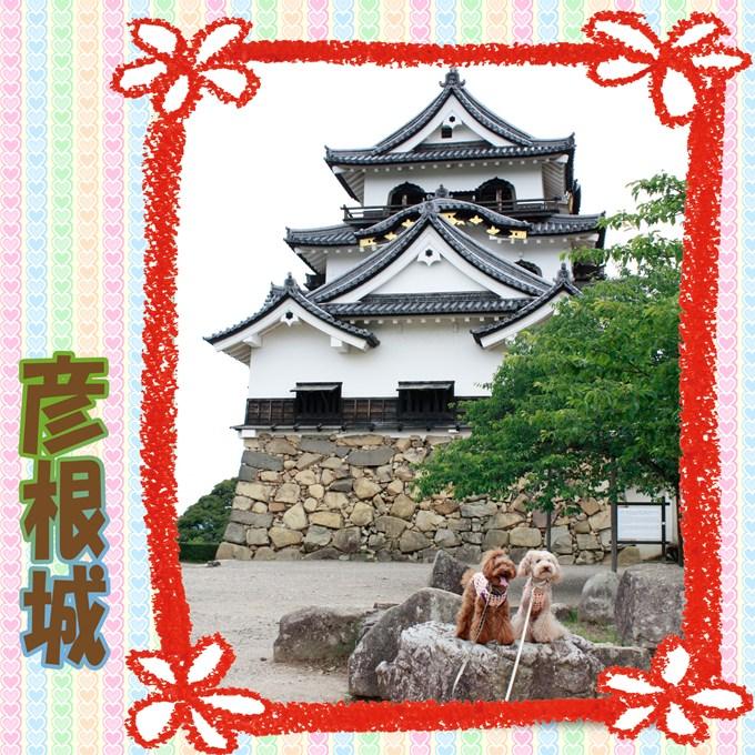 13_20120701144819.jpg
