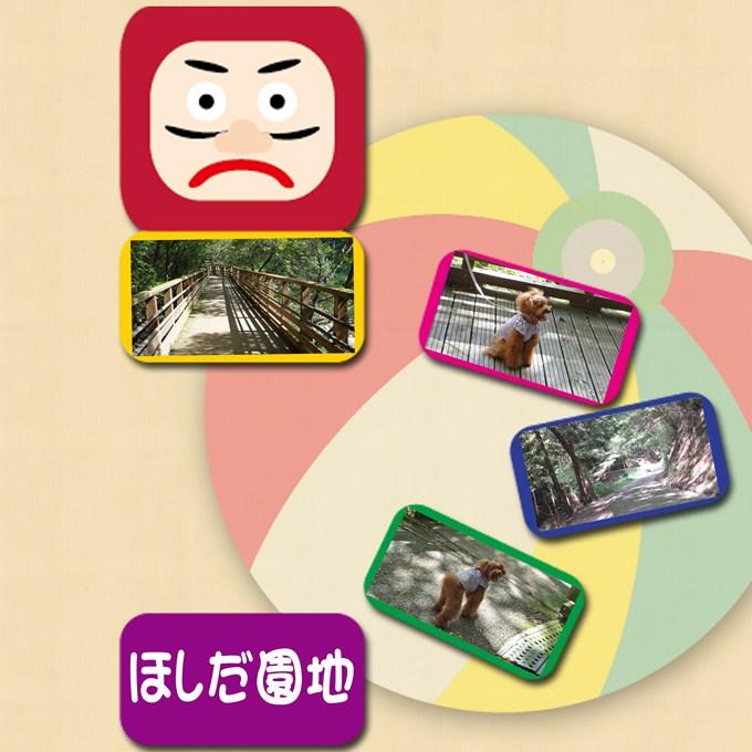 2_20120923092029.jpg