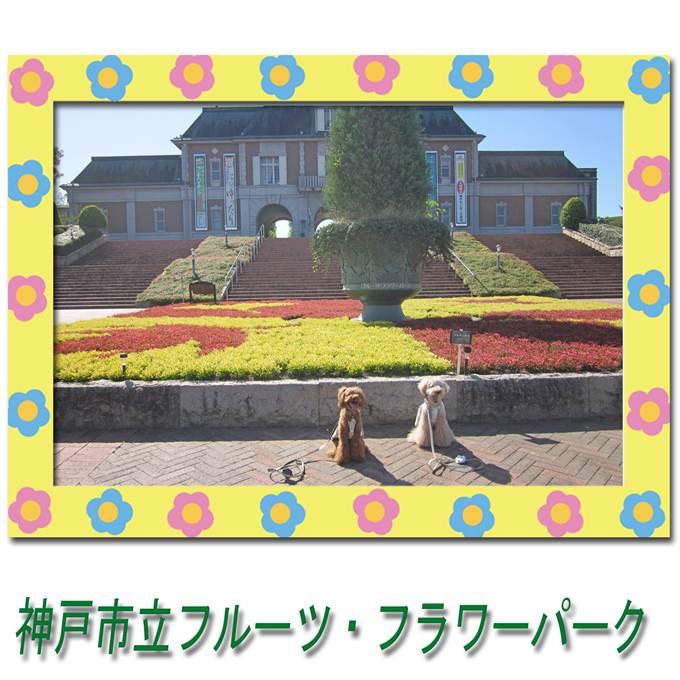 2_20121013075948.jpg
