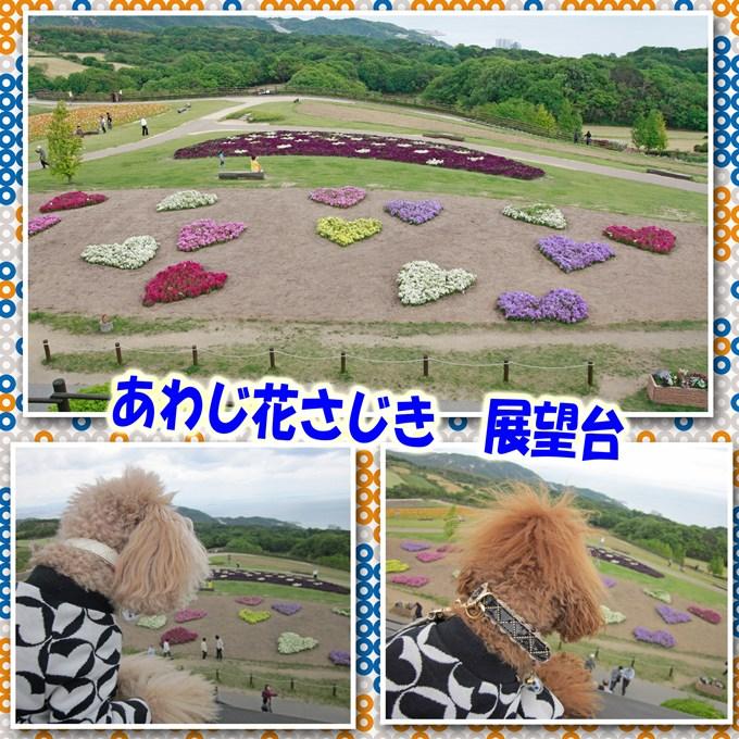 30_20120518204830.jpg