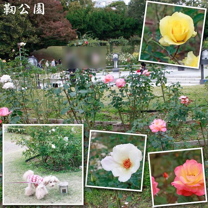 32_20121125191215.jpg