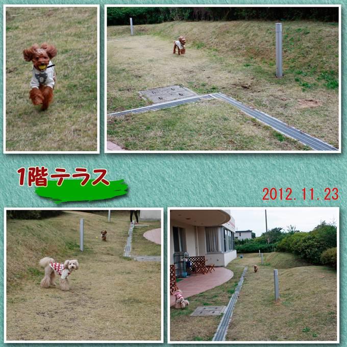 34_20121216190520.jpg