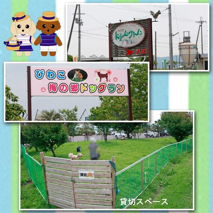 40_20120703221611.jpg